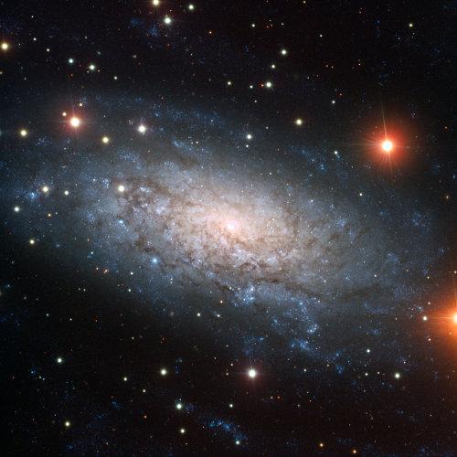 NGC3621
