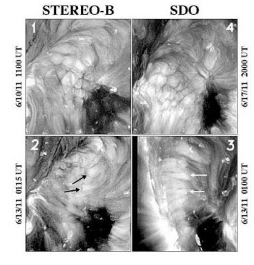 Celdas coronales SDO y STEREO